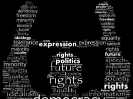Democracy - Presidential or Parliamentary by Ahmed Necip YILDIRIM in Serazat.com